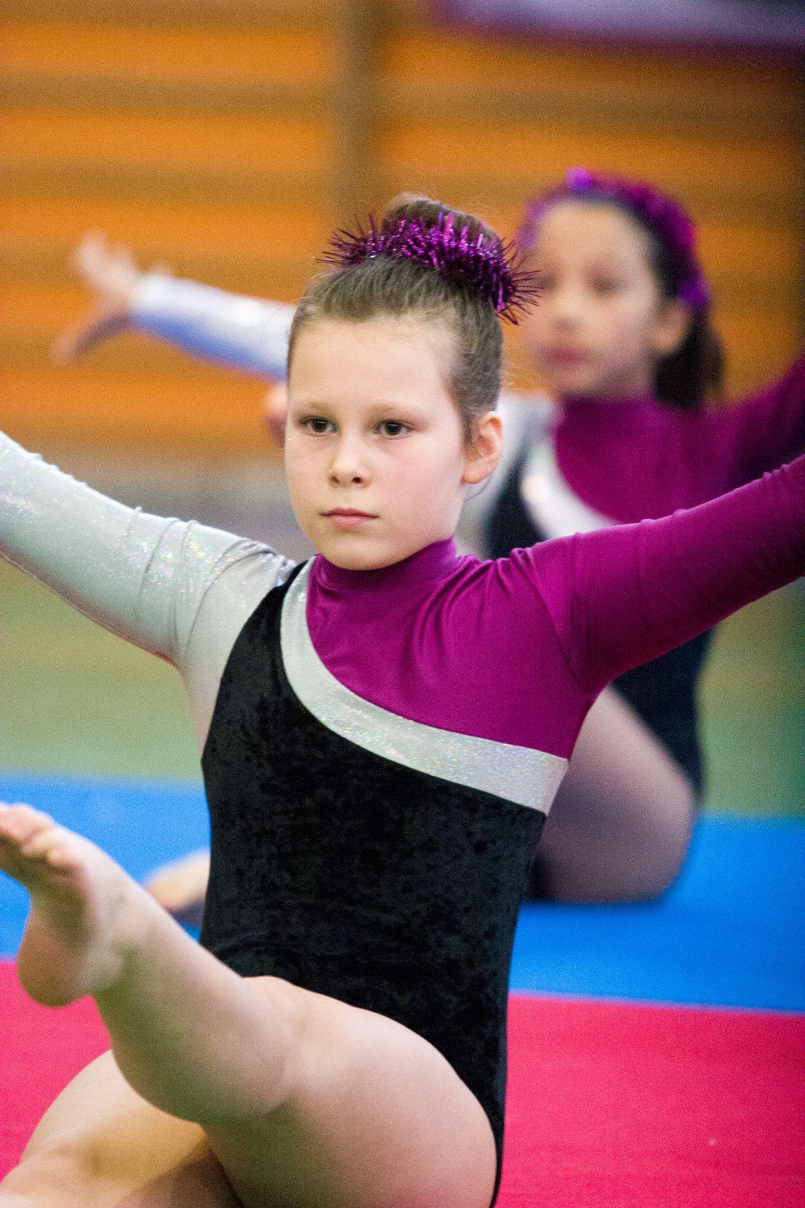 Saggio Olimpia Gym 2014_101