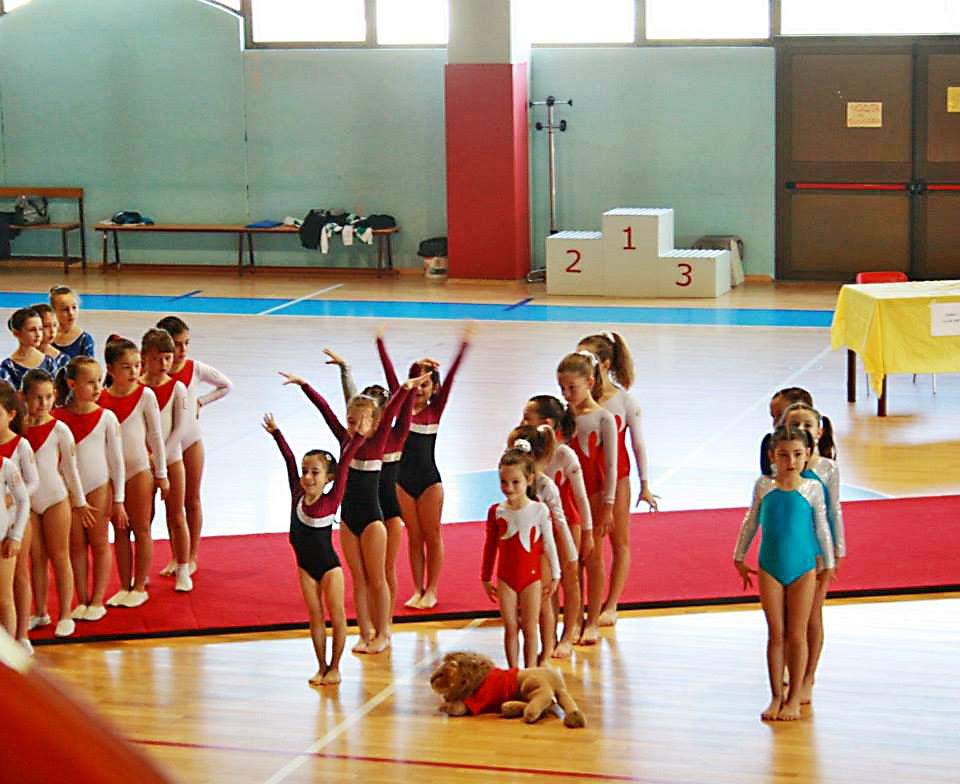 ginnastica-artistica-olimpia-gym-1